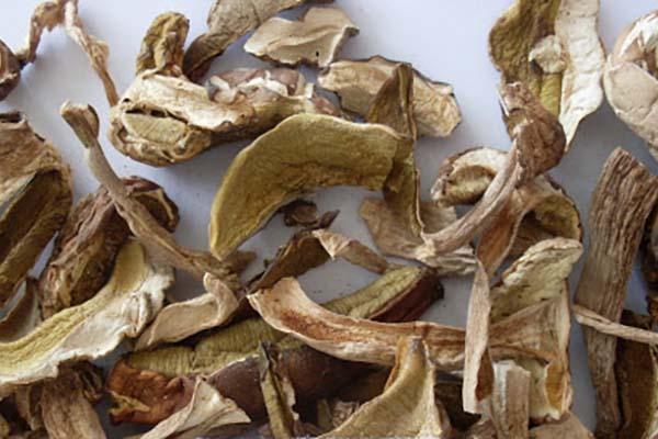 Какие грибы можно сушить?
