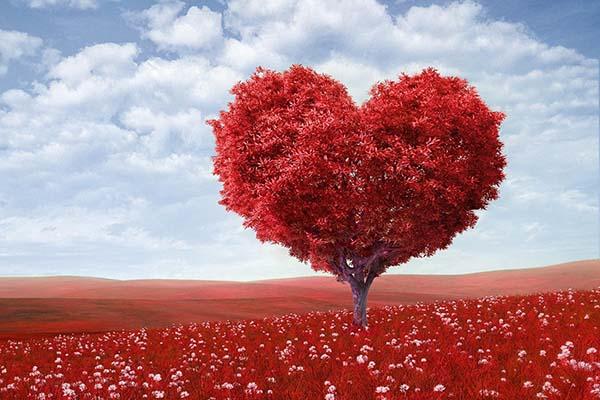 Что значит любовь