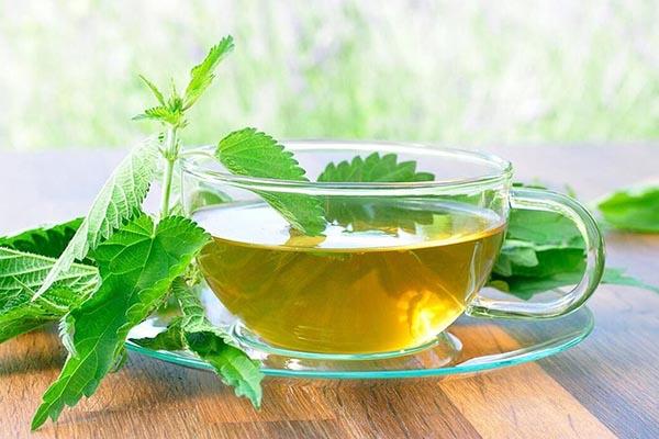 Полезен ли зеленый чай?